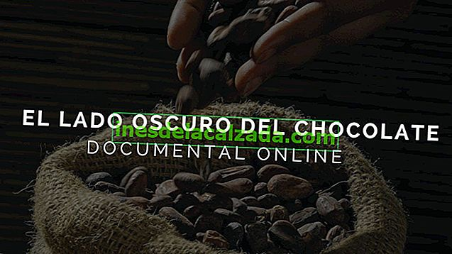 Documentaire: Le côté obscur du chocolat